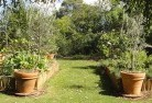 Barnawartha Vegetable gardens 3