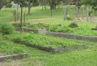 Barnawartha Vegetable gardens 5